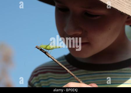 India, Kerala, Periyar National Park. A young boy observes a cricket on a twig. (MR) - Stock Photo