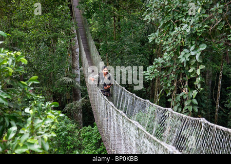 Peru. Jesus, an experienced local guide at Inkaterra Rerserve Amazonica, crossing a bridge on the treetop-canopy - Stock Photo