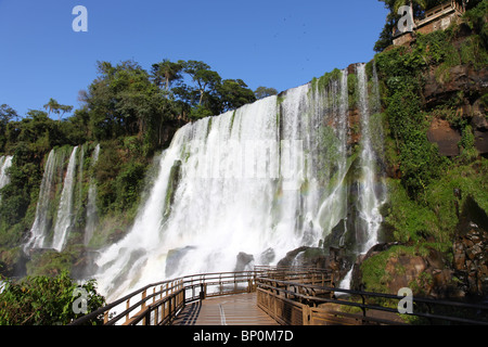 Iguassu waterfalls on a sunny day early in the morning. The biggest waterfalls on earth. - Stock Photo