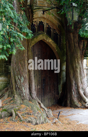 Two old yew trees and church door, 'St Edwards' Church, Stow on the Wold, Cotswolds, UK - Stock Photo