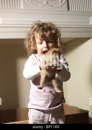 Three Year Old Girl Screaming With Delight Holding a Ginger Kitten - Stock Photo