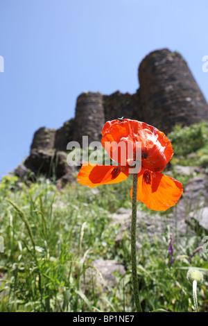 Armenia, 20100628, Monastery Amberd, Armenia; © Gerhard Leber - Stock Photo