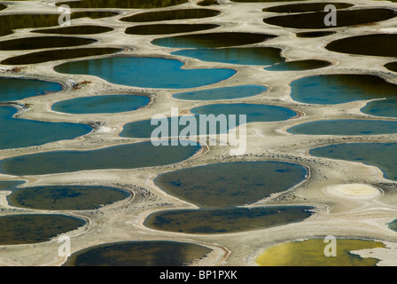 Spotted Lake, near Osoyoos, in the Interior of British Columbia, Canada - Stock Photo