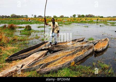 Young man of the local Bayei community standing with a pole in a tradiional mokoro logboat, Okavango Delta, Botswana - Stock Photo
