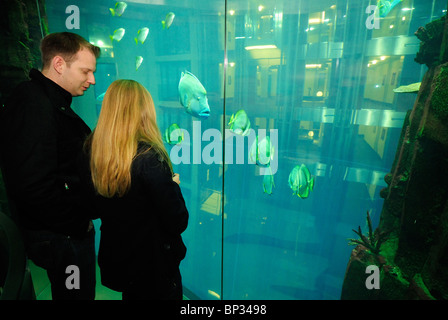 Zylinder Aquarium Radisson Hotel Aquarium Berlin