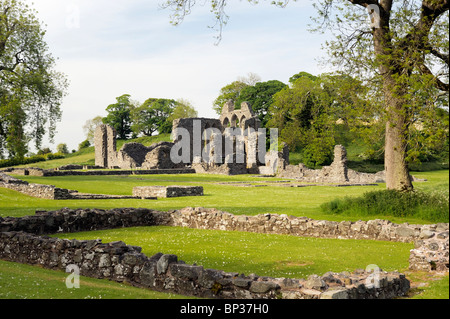 Inch Abbey near Downpatrick, County Down, Northern Ireland. Norman Cistercian abbey founded 1180 by John de Courcy - Stock Photo