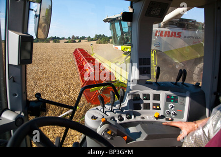 Harvesting - View from tractor - Stock Photo