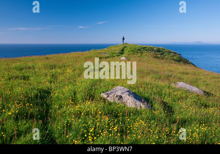 Flowering season at the island Runde on the Atlantic west coast of Norway. - Stock Photo