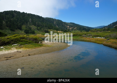 A small creek at the entrance of Big Basin Redwoods State Park, California, USA - Stock Photo