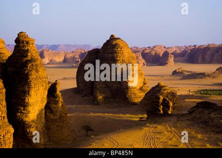 Saudi Arabia, Al Ula, desert near the oasis - Stock Photo