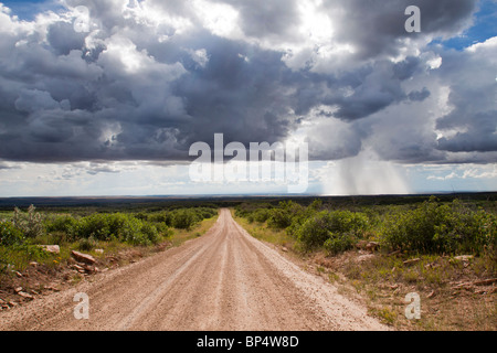 Isolated thundershower falling from looming cumulus cloud formations while sun shines on dirt road leading into - Stock Photo