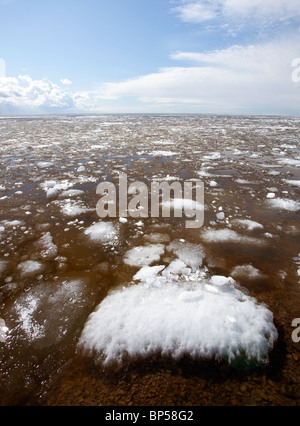Blocks of melting sea ice float to the shore , Finland - Stock Photo