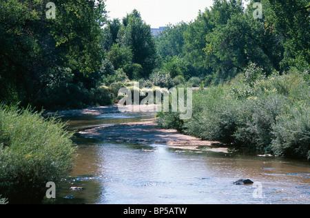 Cherry Creek in Denver, Colorado, USA. - Stock Photo