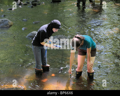 Female teenage high school students using a digital sensor to measure dissolved oxygen levels in a stream, northern - Stock Photo
