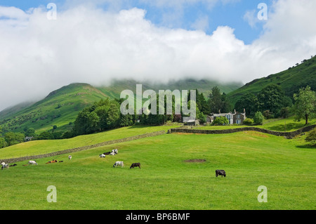 Looking up the fell towards Fairfield shrouded in mist in summer near Grasmere Lake District National Park Cumbria England UK United Kingdom Britain