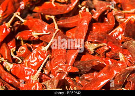 Red Chilies are offered for sale a market in Ahmedabad, Gujarat, India. - Stock Photo