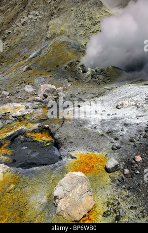 White Island Volcano view - Stock Photo