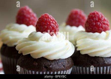 Chocolate and raspberry cupcakes - Stock Photo