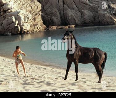KELLY RENO & BLACK HORSE THE BLACK STALLION (1979) - Stock Photo