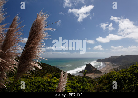 Views of Piha beach in New Zealand featuring Lion Rock - Stock Photo