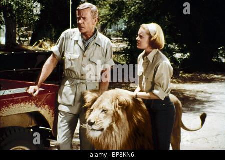 MARSHALL THOMPSON, CHERYL MILLER, CLARENCE, DAKTARI, 1966 - Stock Photo