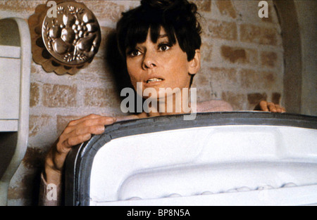 AUDREY HEPBURN WAIT UNTIL DARK (1967) - Stock Photo