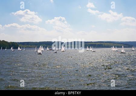 Sailing boats on the Moehnesee, Naturpark Arnsberger Wald, Wildlife park, Sauerland, North Rhine-Westphalia, Germany, - Stock Photo