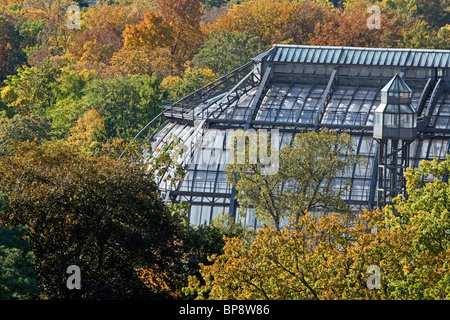 the Great Pavilion, Das Grosse Tropenhaus, Botanical Garden in Dahlem Berlin. - Stock Photo