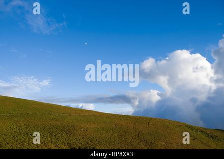 Moon over hill full of heather, near Rabacal, Paul da Serra Plateau, Madeira, Portugal - Stock Photo