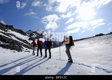 Four mountain hikers ascending to mount Hochfeiler, Zillertal Alps, South Tyrol, Italy - Stock Photo