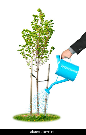 Hand of a businessman watering young tree - Stock Photo