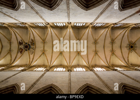 The ceiling of Ulm Minster (the Ulmer Munster) Ulm, Germany.