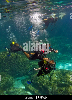 Under Water Scuba Diver With Bubbles Stock Photo Royalty Free Image 5149625 Alamy
