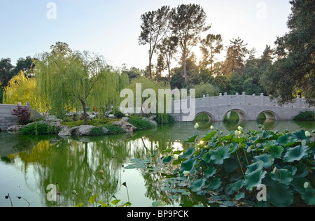 Beautiful Chinese Garden at the Huntington Library. - Stock Photo