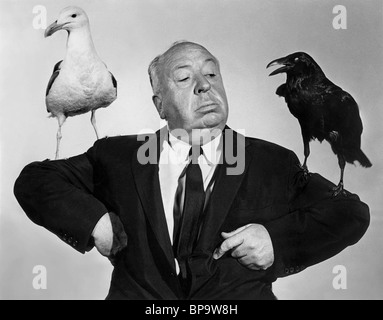 ALFRED HITCHCOCK, CROW, SEAGULL PUBLICITY SHOT, THE BIRDS, 1963 - Stock Photo