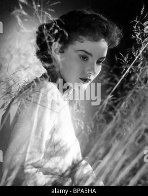 PETULA CLARK THE CARD (1952) - Stock Photo