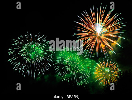 Firework bursts in the night sky, over trees (just visible). Space for text in the dark of the night sky. - Stock Photo