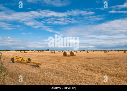 Make Hay While the Sun Shines - Stock Photo