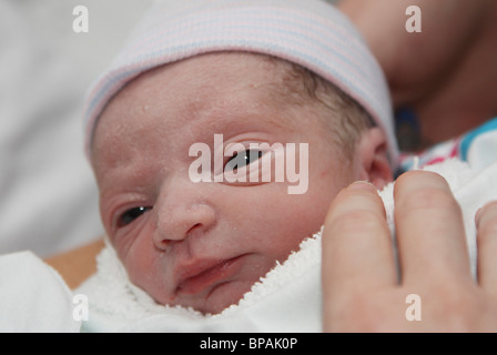 A Newborn Infant, Only Minutes Old - Stock Photo