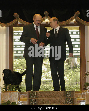 President of Russia held a meeting with Belarusian President, Alexander Lukashenko in Sochi - Stock Photo