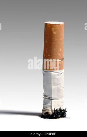 Stubbed out cigarette - Stock Photo