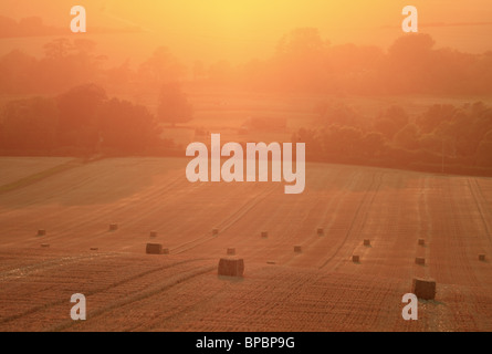 Bales of straw in a field on the South Downs near Wilmington, East Sussex, England. - Stock Photo