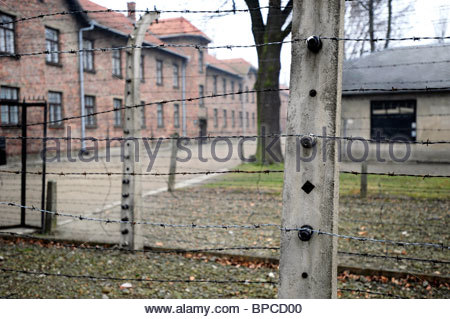 Detail of the perimeter fence surrounding Auschwitz concentration camp, very close to the main gates. - Stock Photo