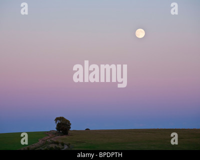Full Moon rises in the twilight over Walbury Hill in Berkshire UK - Stock Photo