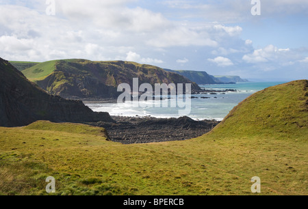 View towards Swansford Hill Lower Sharpnose to Harscott High Cliff along Devon & North Cornish Coast  from St Catherine's - Stock Photo