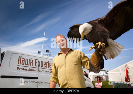 UK, England, Merseyside, Southport Flower Show, Chris O'Donnell, of Hawk Experience, with Bald Eagle on arm - Stock Photo