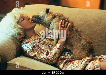 LIN SHAYE, DOG, THERE'S SOMETHING ABOUT MARY, 1998 - Stock Photo