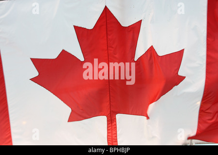 maple leaf canadian flag canada - Stock Photo