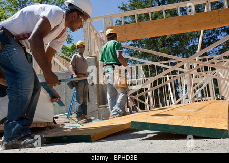 Carpenters working on a lamination beam at a construction site - Stock Photo
