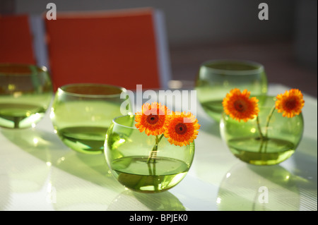 Green glass bowls with orange gerbera flowers - Stock Photo